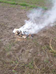 Im Kartoffelfeuer...